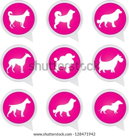 Set Of White Dog on Pink Icons Isolated on White Background - stock photo