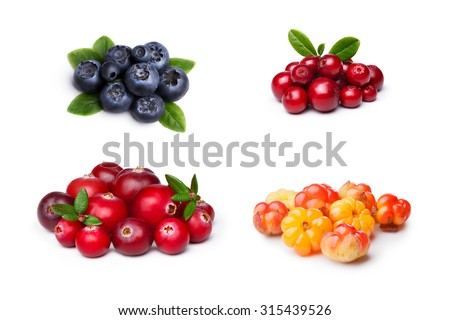 Set of wild northern berries: bilberry,cloudberry, lingonberry,cranberry. Studio shoot,large depth of field, retouched. - stock photo