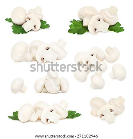 Set ripe champignons isolated on white background - stock photo