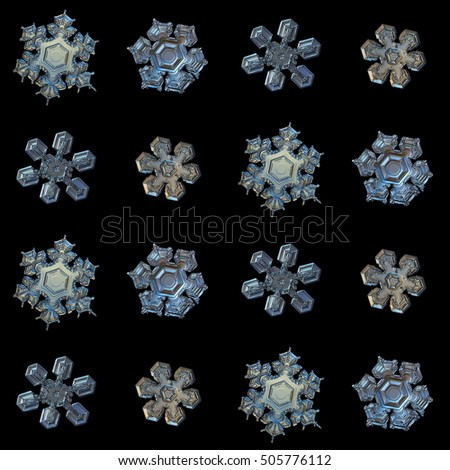 Set with snowflakes isolated on black background. This is macro photos of real snow crystals: medium size stellar dendrites with simple shape, but complex relief surface, arranged in square grid.