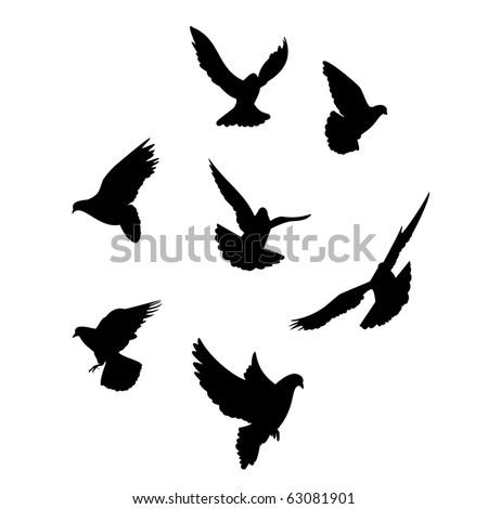 Seven dove silhouette - stock photo
