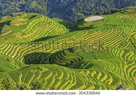 Seven Stars Accompany the Moon, part of the Dragon's Backbone Rice Terraces, or Longji Rice Terraces,  located next to the village of Ping'an in northern Guilin, Guangxi Zhuang Autonomous Region China - stock photo