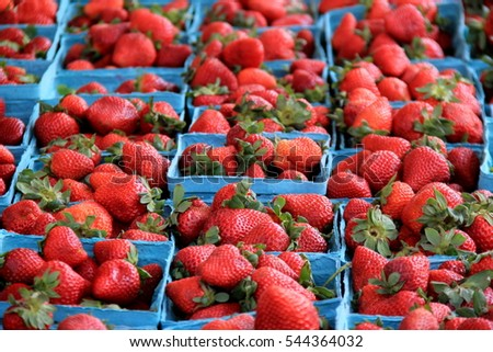 Several blue pint containers filled with ripe and juicy strawberries set on table at local farmers market.