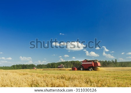 Several combine harvesters are working on oats farm field under blue sky during hot summer day - stock photo