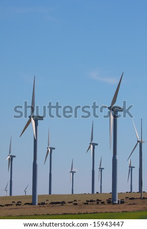 Several rows of wind turbines spinning
