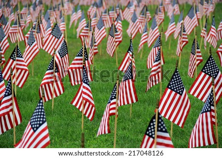 Several small flags on front lawn of home, make show of patriotic belief in country and honor.