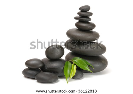 several stones and green sprout - stock photo