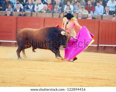 SEVILLA -MAY 20: Novilladas in Plaza de Toros de Sevilla. Novillero:Alvaro Sanlucar. May 20, 2012 in Sevilla (Spain) - stock photo