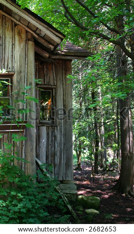 Shack found in woods by camp - stock photo