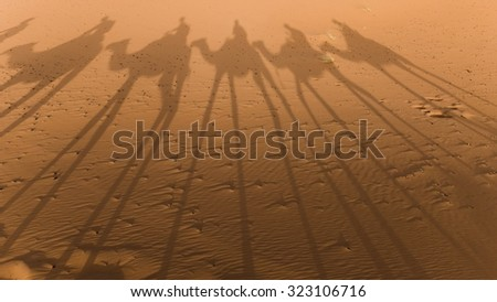shadow of a camel train in the desert - stock photo