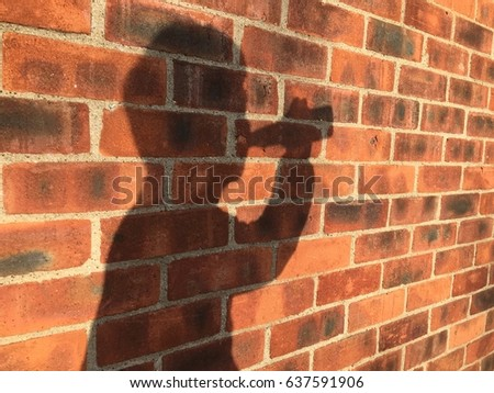 Shadow of bottle of beer drinking man on the brick wall