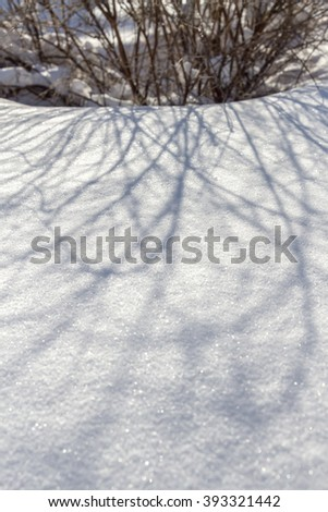Shadow on the snow on the bushes