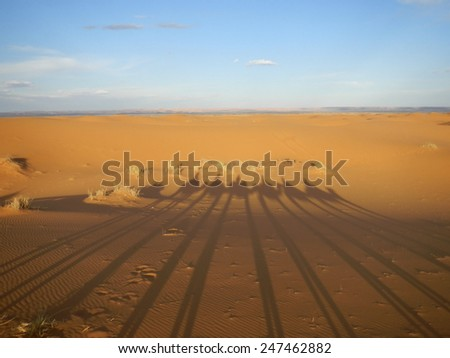 Shadows of camel caravan on orange sand, Sahara desert           - stock photo