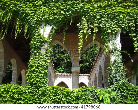 Shady arbor covered with green leaves of ivy - stock photo