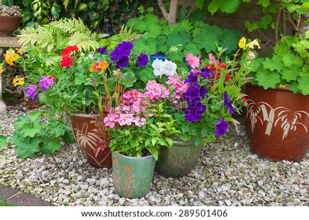 Shady corner of a garden with containers full of colorful flowers - stock photo