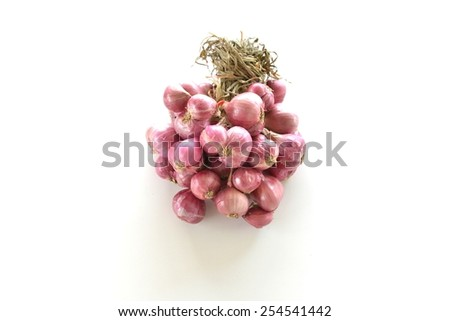 Shallot  - stock photo