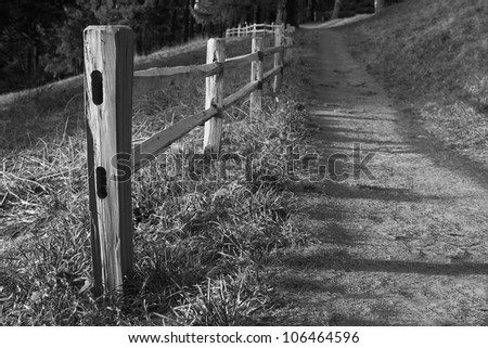Shallow DOF image of Wood fenced path on the slope of a hill headed into the dark woods in black and white - stock photo