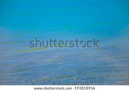 Shallow turquoise water.  St.Croix lake in Verdon. (Provence, France).  - stock photo