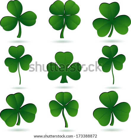 Shamrock set on white. - stock photo