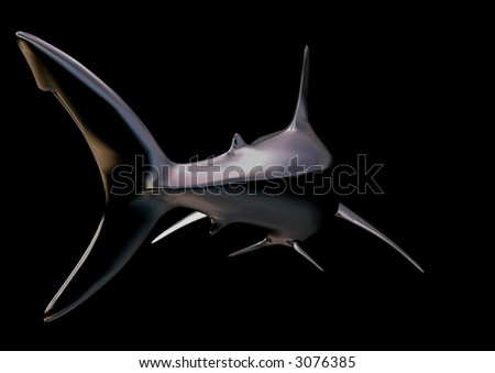 shark on black - stock photo