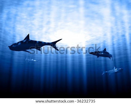 Sharks in rays with sun - stock photo