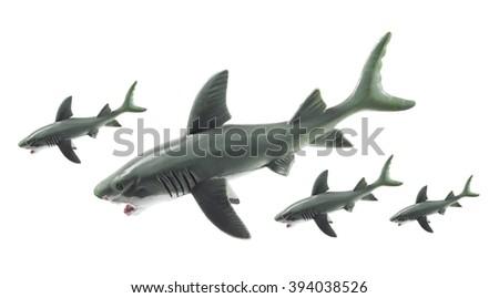 Sharks on White Background - stock photo
