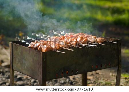 shashlik at nature - stock photo