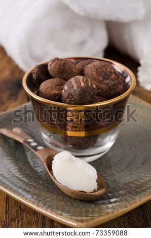 Shea butter in a spoon with shea nuts - stock photo