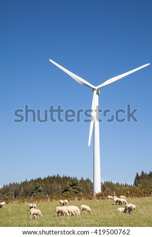 Sheep grazing in a pasture at the foot of a wind turbine  on a forested hilltop  against a sunny blue sky with copy space, agriculture, power and energy - stock photo