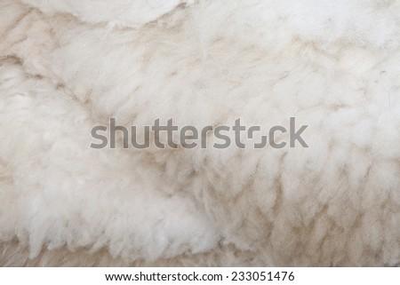 sheep skin texture background, pure natural soft raw wool, softness  - stock photo