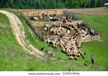 Sheepfold in the mountains - stock photo