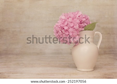 Sheer Haze Vintage Pale Pink Hydrangea on a rustic wood background with room for copy. - stock photo