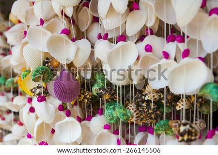 Shell Curtain - stock photo