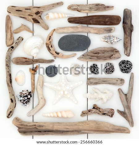 Shell, driftwood and pebble abstract collage over wooden white background. - stock photo