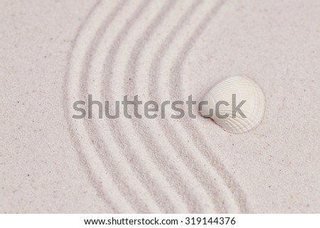 Shell on white zen garden