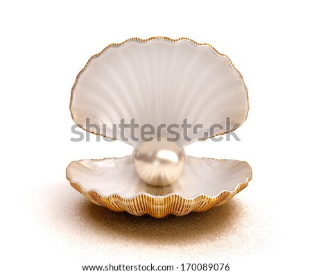 Shell pearl - stock photo
