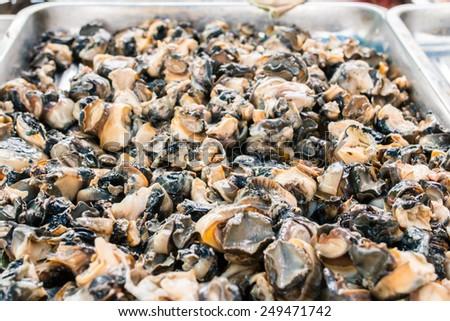 shell slice at market - stock photo