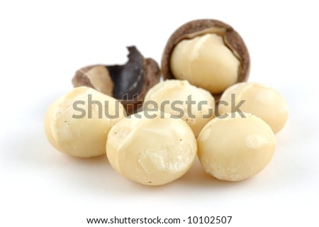 Shelled and unshelled macadamia nuts in isolated white background - stock photo