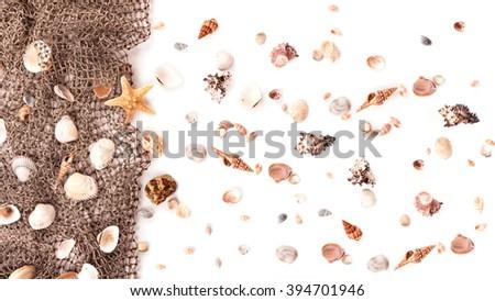 shells and fishing net on white - stock photo