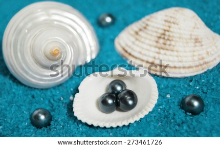 shells and pearls isolated on blue background made of little blue rocks - stock photo