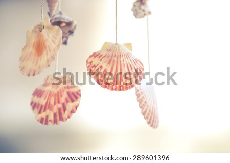 Shells mobile hanging on roof for decoration. (Vintage filtered) - stock photo
