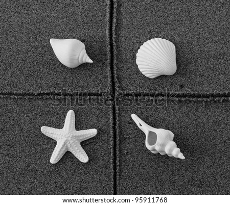 shells on beach - stock photo