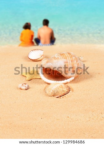 Shells on the sandy beach and a young couple in the background - stock photo