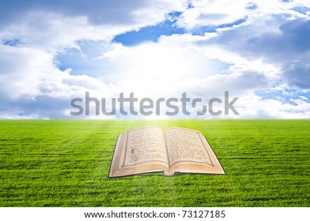 Shine Open Bible On The Grass - stock photo