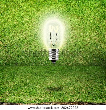 shining bulb in grass room background,eco idea