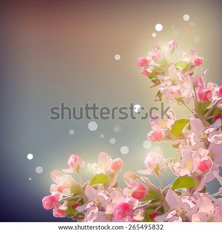 Shining Cherry blossom background.  Romantic floral spring season beautiful card - stock photo