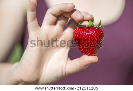 Shinny day in summer, a big specimen of strawberry (63 grams) freshly harvest. Heart shaped. Selective focus on the red ripe strawberry holding between woman's fingers in front of her heart