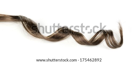 Shiny brown curl isolated on white - stock photo