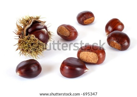 shiny chestnuts on an isolated background