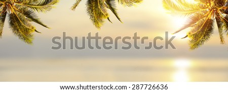 Shiny tropical landscape banner background. Coconut palm tree over blurry ocean. Panoramic view. - stock photo
